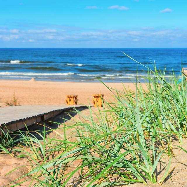 Liettua Palangan merenrantamaisemaa Lähialuematkat